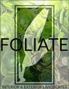 Plant Rental San Francisco - Foliate